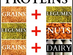 complete-protein-chart